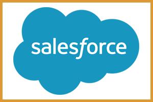 Salesforce Development & Integrations